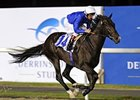 Mendip drew away impressively under Frankie Dettori to post an easy victory at Meydan Racecourse in Dubai.