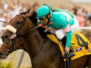 Zenyatta Connections Pulling for Madeo