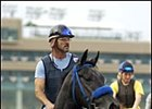 Blackdoun, will represent trainer Julio Canani in the Breeders' Cup Turf.