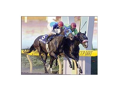 Fleetstreet Dancer, right, edges out Admire Don (6) in a stretch duel during the fourth running of the Japan Cup Dirt, Saturday at Tokyo Racecourse.