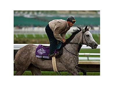 Oprah Winney looks to rebound from her disappointing race in the Breeders' Cup.