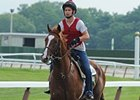 "Dullahan had a leisurely jog at Belmont Park on Saturday.<br><a target=""blank"" href=""http://photos.bloodhorse.com/AtTheRaces-1/at-the-races-2012/22274956_jFd5jM#!i=1881782511&k=Xb3KkZq"">Order This Photo</a>"