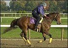 Kona Gold, will make appearance at Santa Anita.