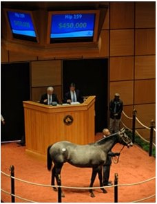 Hip #159; colt, Medaglia d'Oro - Beright by Gray Slewpy brought $450,000 in the middle of the afternoon July 13 during the opening session of the Fasig-Tipton Kentucky July select yearling sale.