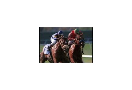 Lengths To Which Photoshop Jockeys At >> Redattore Rallies To Win Eddie Read By Two Lengths Bloodhorse