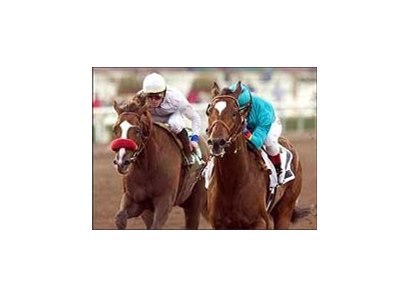 Derby hopeful Brother Derek, here winning the San Rafael Stakes, turned in a bullet work Sunday at Sant Anita.