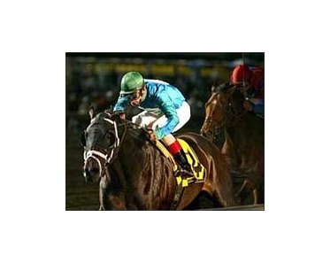 Magna Graduate wins the Pegasus Stakes at the Meadowlands.