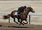 Filly by Malibu Moon was among the fastest horses working an eighth of a mile at Barretts preview.
