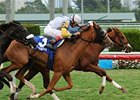 "Speak Easy Gal holds off Lady Shakespeare to win the Orchid Stakes at Gulfstream Park.<br><a target=""blank"" href=""http://www.bloodhorse.com/horse-racing/photo-store?ref=http%3A%2F%2Fpictopia.com%2Fperl%2Fgal%3Fprovider_id%3D368%26ptp_photo_id%3D8865107%26ref%3Dstory"">Order This Photo</a>"