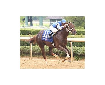 Smarty Jones makes it six-in-a-row and a run for the roses with decisive win in the Arkansas Derby.