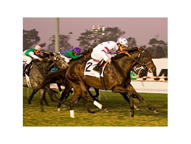 "The last time Court Vision ran at Hollywood Park, he won the Hollywood Derby.<br><a target=""blank"" href=""http://www.bloodhorse.com/horse-racing/photo-store?ref=http%3A%2F%2Fpictopia.com%2Fperl%2Fgal%3Fprovider_id%3D368%26ptp_photo_id%3D6910928%26ref%3Dstory"">Order This Photo</a>"