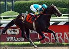 Maimonides broke his maiden at Saratoga last summer.
