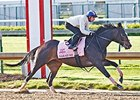 Sarah Sis worked five furlongs in 1:02 3/5 on April 24.
