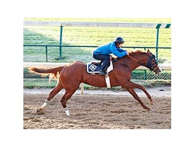Shackleford breezed five furlongs in 1:03 4/5 at Churchill Downs Oct 22.