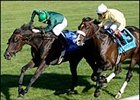 "Transduction Gold (left) gets by Bee Charmer to win the Sycamore.<br><a target=""blank"" href=""http://www.bloodhorse.com/horse-racing/photo-store?ref=http%3A%2F%2Fpictopia.com%2Fperl%2Fgal%3Fprovider_id%3D368%26ptp_photo_id%3D2435812%26ref%3Dstory"">Order This Photo</a>"