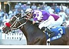 Tour of the Cat defeats Burning Roma in the Richter Scale Breeders' Cup Handicap. <br>