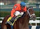 Wonder Lady Anne L surprise winner of Saturday's Demoiselle at Aqueduct.