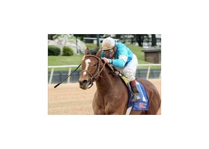 "High Heels upset winner in Oaklawn's Fantasy.<br><a target=""blank"" href=""http://www.bloodhorse.com/horse-racing/photo-store?ref=http%3A%2F%2Fpictopia.com%2Fperl%2Fgal%3Fprovider_id%3D368%26ptp_photo_id%3D977584%26ref%3Dstory"">Order This Photo</a>"