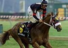 Kent Desormeaux aboard Golden Missile after crossing the finish line to win the Pimlico Special on May 13.
