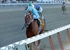 "9,671 saw Haynesfield win the Jockey Club Gold Cup.<br><a target=""blank"" href=""http://www.bloodhorse.com/horse-racing/photo-store?ref=http%3A%2F%2Fpictopia.com%2Fperl%2Fgal%3Fprovider_id%3D368%26ptp_photo_id%3D9217772%26ref%3Dstory"">Order This Photo</a>"