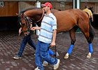 "Lookin At Lucky<br><a target=""blank"" href=""http://www.bloodhorse.com/horse-racing/photo-store?ref=http%3A%2F%2Fpictopia.com%2Fperl%2Fgal%3Fprovider_id%3D368%26ptp_photo_id%3D8923657%26ref%3Dstory"">Order This Photo</a>"