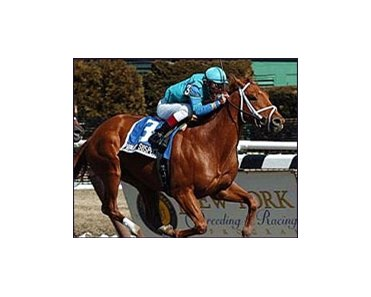 Primary Suspect, ridden by Pablo Fragoso, wins the Toboggan Stakes.