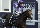 Camelot, Joseph O'Brien Honored in Ireland