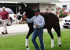 Rachel Alexandra is led by Scott Blasi to an awaiting horse van to begin her journey to Pimlico.
