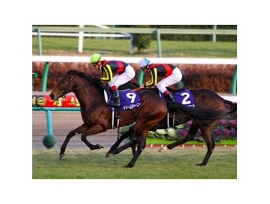 Dream Journey defeated favored Buena Vista to become the 54th champion of the season-ending grade I Arima Kinen at Nakayama Racecourse.