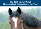 MarketWatch's Top Broodmares of 2008