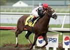High Fly, shown winning the Florida Derby, will miss the Breeders' Cup