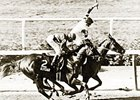Affirmed and Alydar stage the infamous Battle in the Belmont - setting up the Showdown at Saratoga.