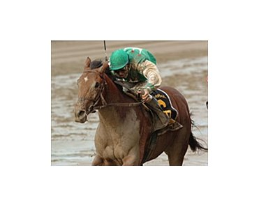Hopeful winner Afleet Alex will have the services of jockey John Velazquez in 2005.