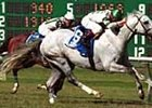 Down the Aisle, defeating Ally's Alley in the United Nations Handicap.