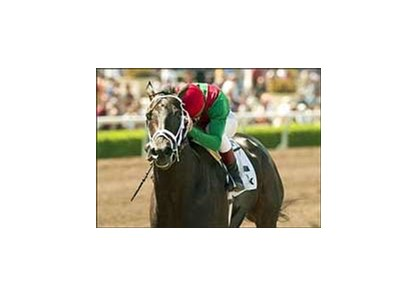 "Fairbanks, with Richard Migliore up, wins the Tokyo City Handicap, Saturday at Santa Anita.<br><a target=""blank"" href=""http://www.bloodhorse.com/horse-racing/photo-store?ref=http%3A%2F%2Fpictopia.com%2Fperl%2Fgal%3Fprovider_id%3D368%26ptp_photo_id%3D949150%26ref%3Dstory"">Order This Photo</a>"