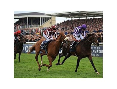 Two Thousand Guineas winner Camelot is now the favorite for the Epsom Derby.