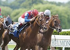 Grade I Winner Peace Rules Retired