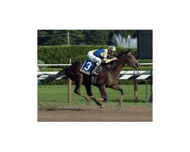 "Jim Dandy winner Street Sense remains on track for the Travers.<br><a target=""blank"" href=""http://www.bloodhorse.com/horse-racing/photo-store?ref=http%3A%2F%2Fpictopia.com%2Fperl%2Fgal%3Fprovider_id%3D368%26ptp_photo_id%3D1864412%26ref%3Dstory"">Order This Photo</a>"