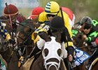 Hippolytus Favored in Prince of Wales Stakes