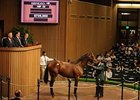 Shadwell Gets Dynaformer Colt for $725,000