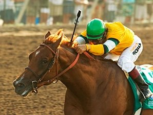 Malibu Possible for Horse Greeley