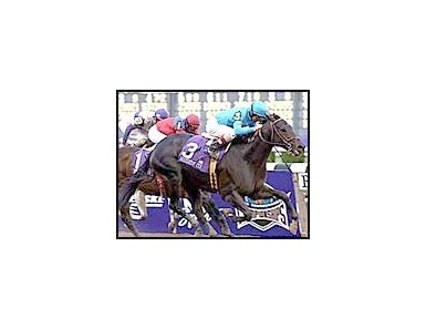 Squirtle Squirt, winning the 2001 Breeders' Cup Sprint.
