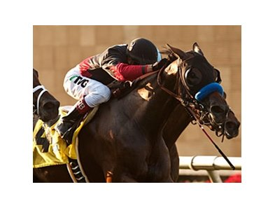 Lady Ten won the one-mile Sandy Blue Handicap at Del Mar Aug. 17.