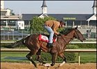 Street Sense Turns in Final Blue Grass Prep
