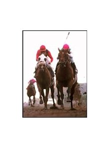 Skimming (right) holds off Futural in the San Diego Handicap.