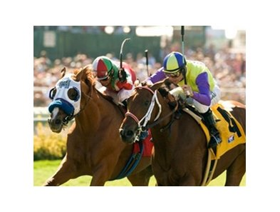 "Rendezvous outlasted Battle of Hastings to win the Del Mar Derby at Del Mar.<br><a target=""blank"" href=""http://www.bloodhorse.com/horse-racing/photo-store?ref=http%3A%2F%2Fpictopia.com%2Fperl%2Fgal%3Fprovider_id%3D368%26ptp_photo_id%3D8461200%26ref%3Dstory"">Order This Photo</a>"