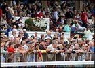 Attendance is up this year at Saratoga.