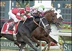 Offlee Wild, defeating Funny Cide in Saturday's Massachusetts Handicap.