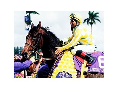 1999 Breeders' Cup Distaff winner Beautiful Pleasure
