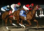 Winter racing at Turfway